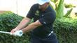 backswing hand movement and wrist hinge